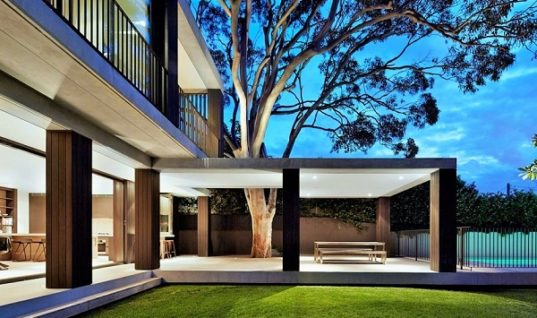 Hopetoun Avenue Residence Preserves Existing Tree