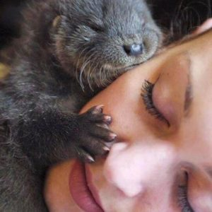 Hugged By An Otter