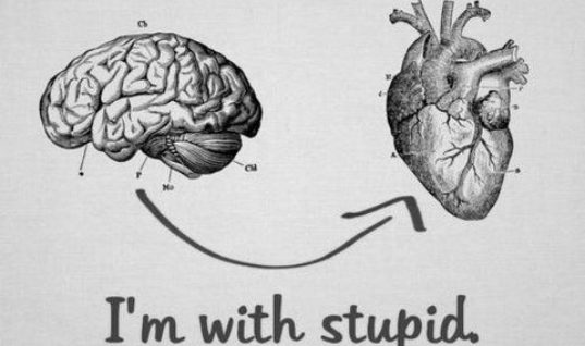 Realistic Brain And Heart