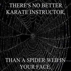 Best Karate Instructor