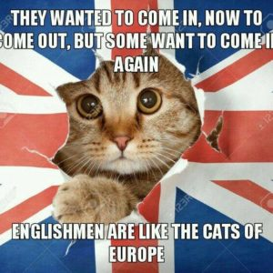 Englishmen Are Like Cats