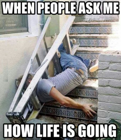 How Life Is Going how life is going funny pictures, quotes, memes, funny images