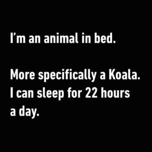An Animal In Bed