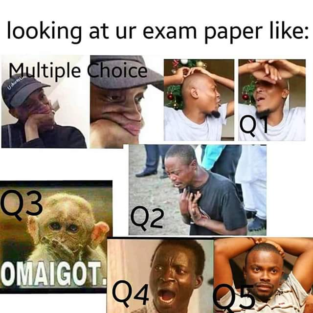 Funny Meme On Exams : Exam paper funny pictures quotes memes images