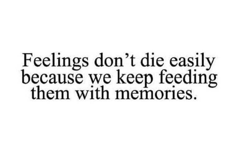 Feelings Don't Die Easily