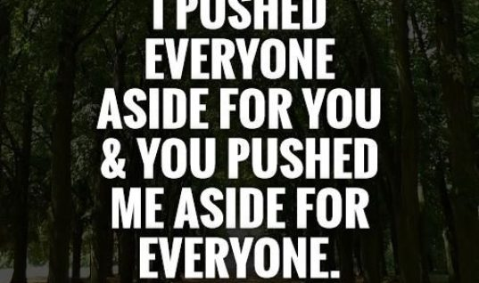 I Pushed You Pushed