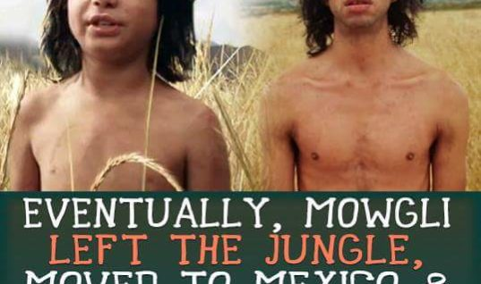 Mowgli Left The Jungle