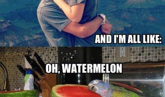 Oh, Watermelon