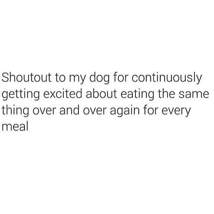 Shout Out To My Dog
