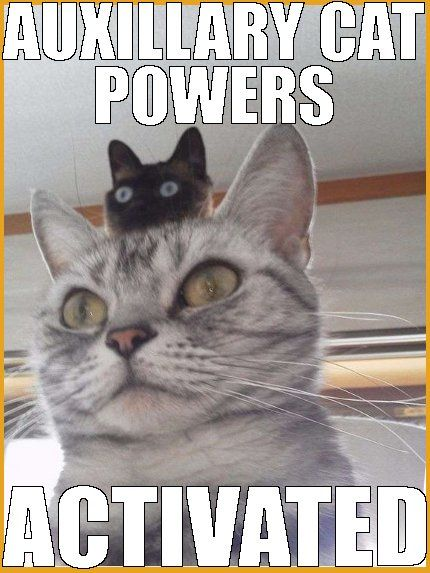 Auxilliary Powers
