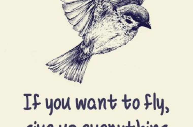 If You Want To Fly