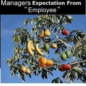 Managers Expectation