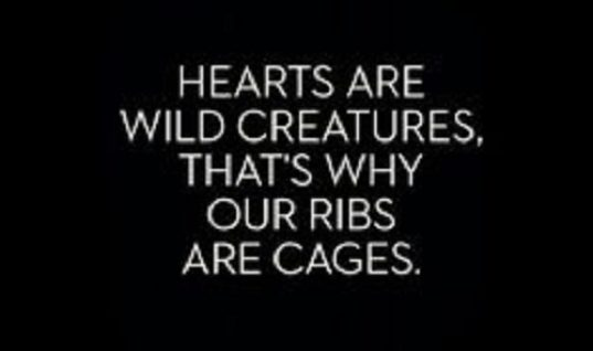 Ribs Are Cages