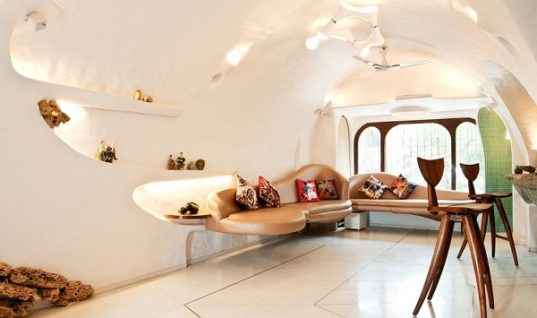 Organic House, a Dream Transformed into Reality