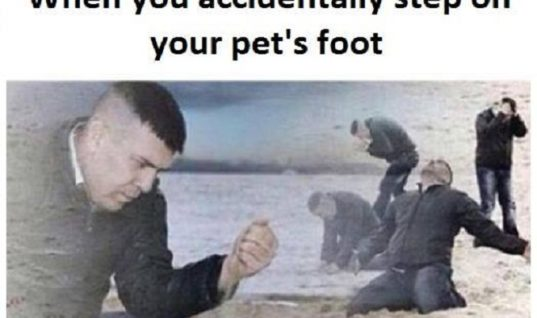 Accidentally Step
