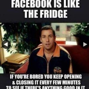 Facebook Like The Fridge