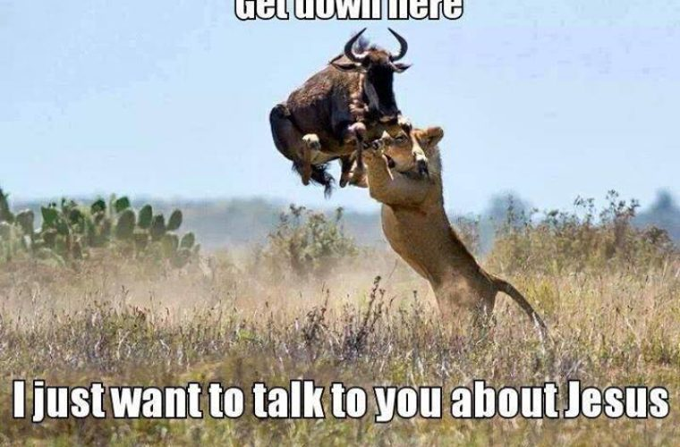 Get Down Here 760x500 get down here funny pictures, quotes, memes, funny images, funny,Get Down Funny Meme