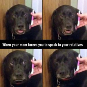 Mom Forces You