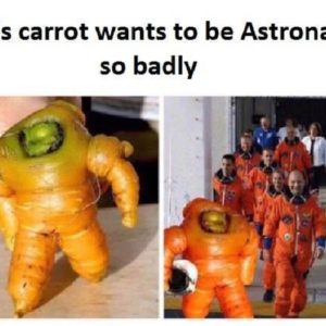 This Carrot