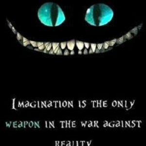 Imagination Is The Only Weapon