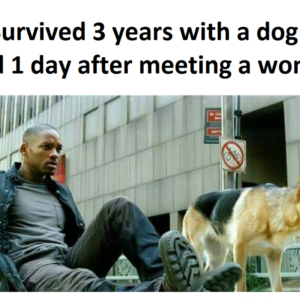 Survived 3 Years With A Dog