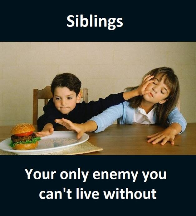 Funny Quotes About Siblings: Funny Pictures, Quotes, Memes, Funny Images