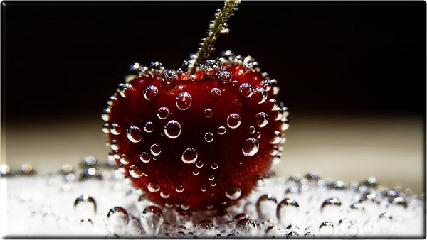 Lovely Macro Photography Examples Most Of The Photos Are Themed On Nature And Insect Art Getting Closer Even Larger For