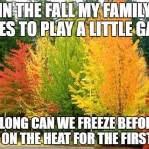 In The Fall