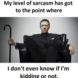 Level Of Sarcasm