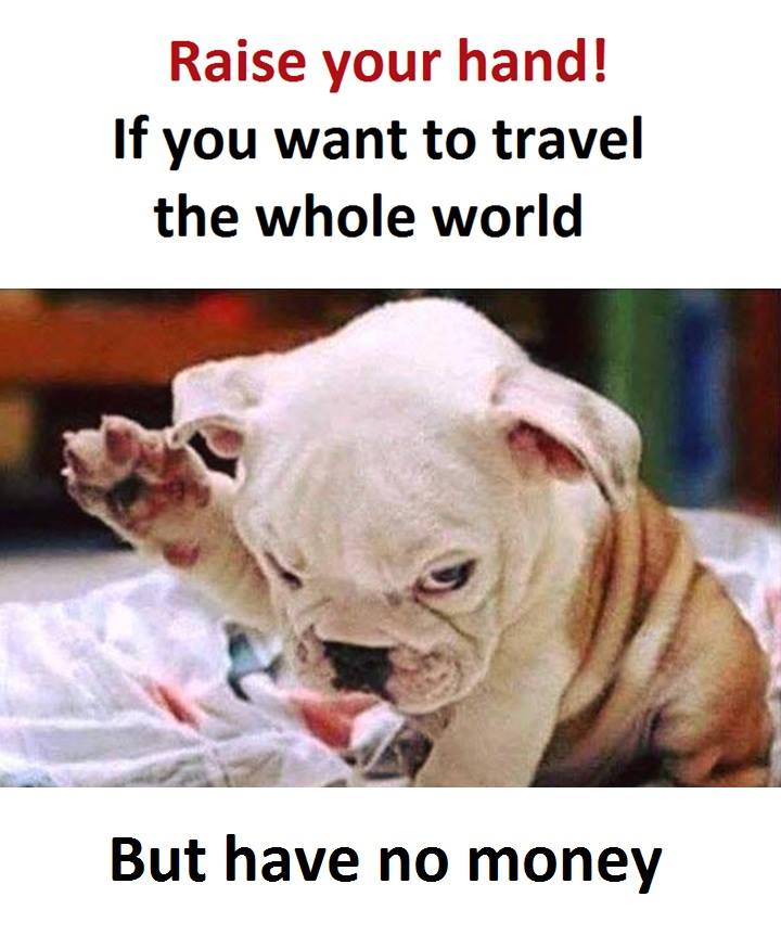 No Money Funny Pictures Quotes Memes Funny Images