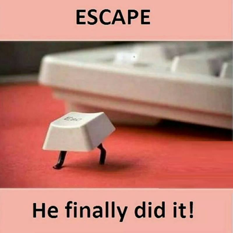 Escape Quotes: Funny Pictures, Quotes, Memes, Funny Images
