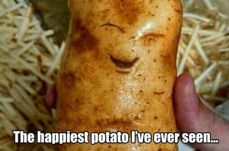 Happiest Potato