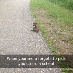Mom Forgets