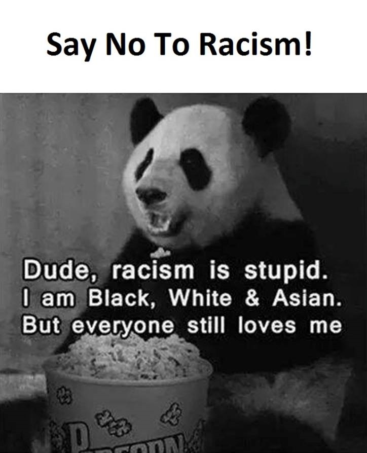 No To Racism Funny Pictures Quotes Memes Funny Images Funny Enchanting Quotes About Racism