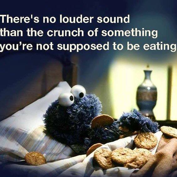 Really Funny Memes About Life : No louder sound funny pictures quotes memes