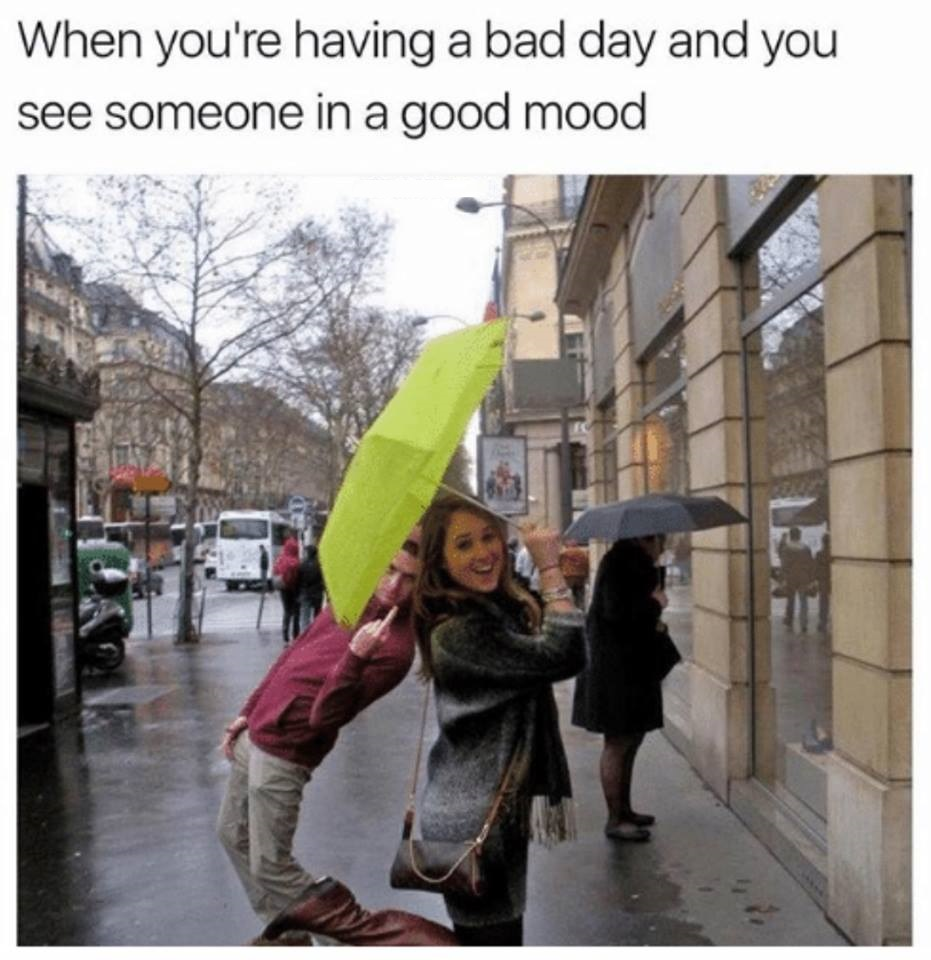 Bad Day Meme Funny : Bad day funny pictures quotes memes images
