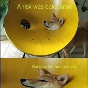 Risk Was Calculated