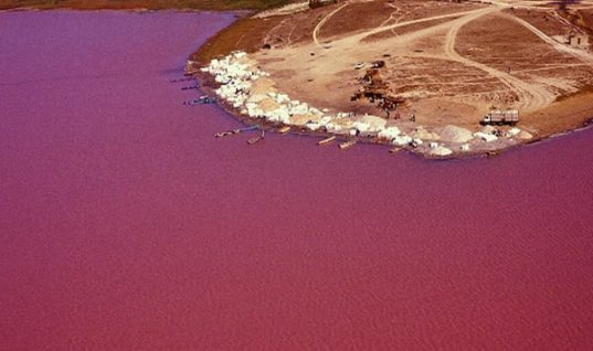 Lake Retba: The Amazing Pink Lake in Senegal