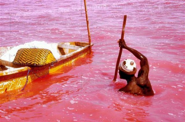 lake-retba-pink-lake