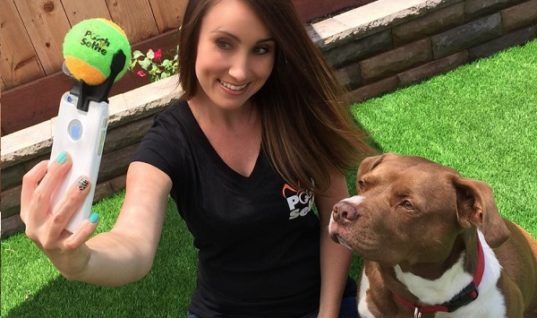 Pooch Selfie Makes Dogs Pose for Selfie
