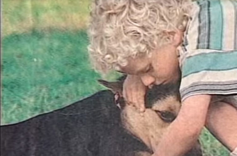 This Dog Went Missing From Home Each Day. But When Her Mom Found Out Why – It'll Make You Cry