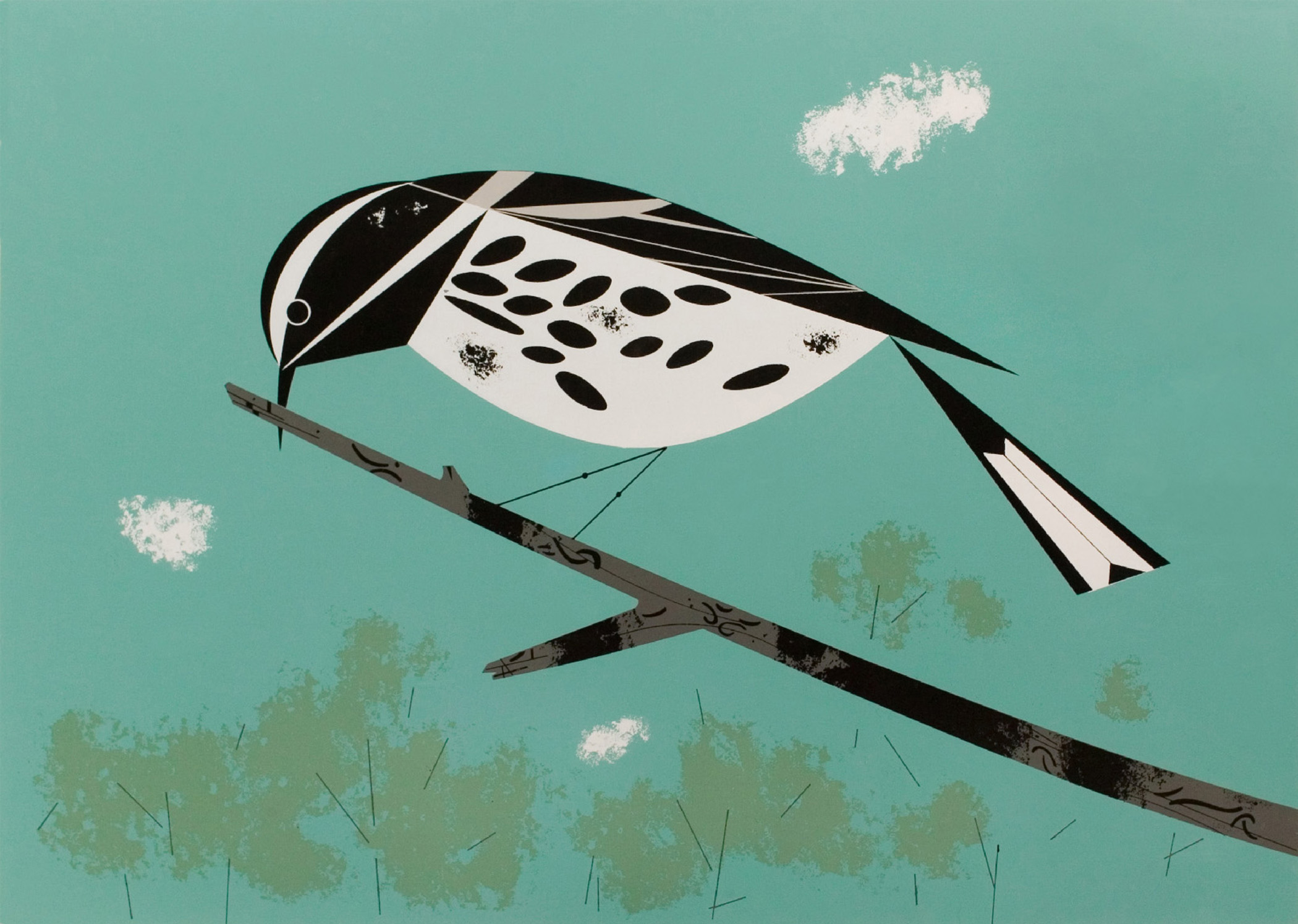 Black and white warbler as depicted by Harper