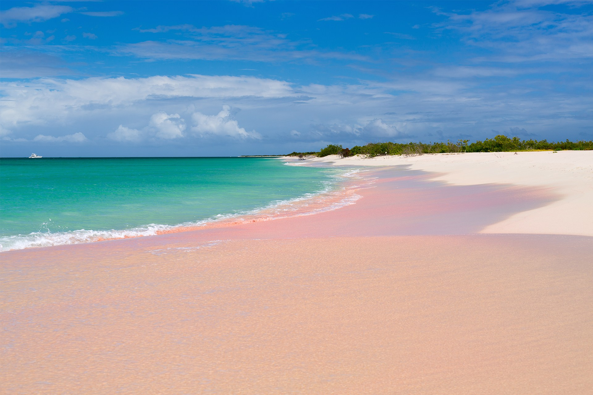 These Are the Coolest Pink Beaches in the World   Funny ...
