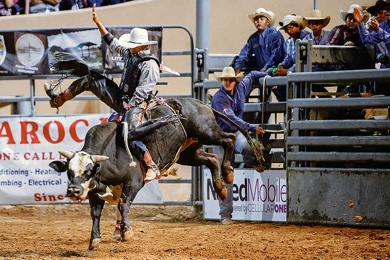 Funny Bull Riding Quotes: The 20 Most Dangerous Jobs On The Planet