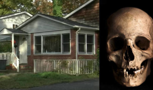 Decades After His Father Disappeared, A Man Made a Terrifying Discovery in His Basement